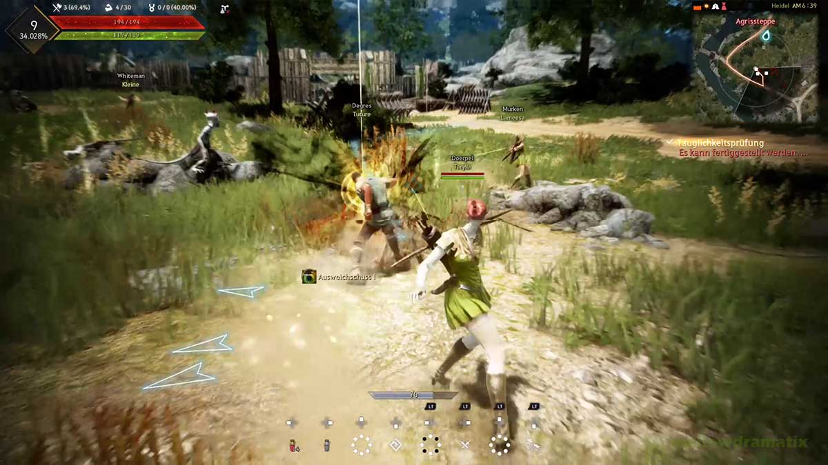 Black Desert im Multiplayer