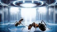 """""""Das Imperium der Ameisen"""" setzt eigene Akzente"""